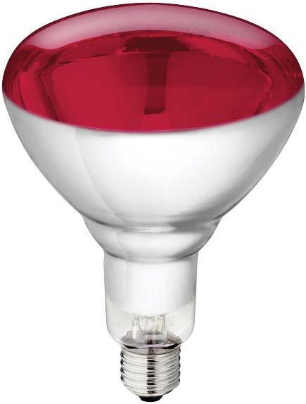 Ferkel - Aufzuchtlampen