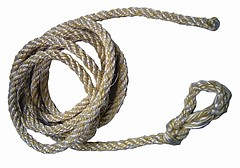 Halfterstricke für Kälber 250 cm