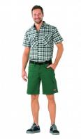 Highline Shorts grün