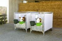 Kälberbox groß   1 bis 3 Stück