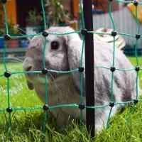 Ellofence Kleintier Weidezaun Starterset mit Weidezaunnetz für Kaninchen und Kleintiere