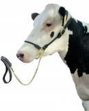 Vorführhalfter für Kühe aus rundgenähtem Leder